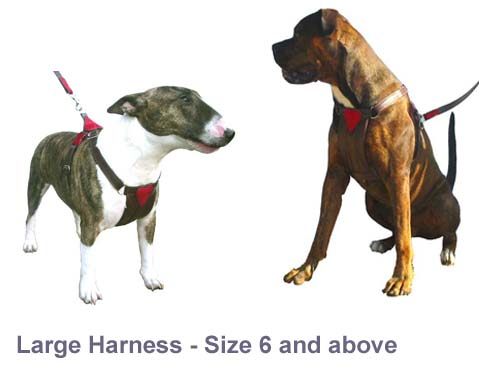 Harnesses Small/Medium, Medium & Large Made to order £125 - £135